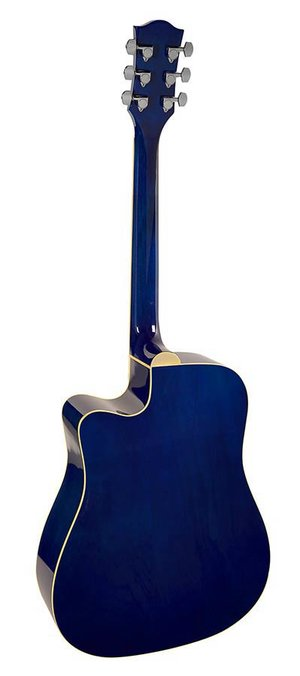Richwood RD-12CE Blue Sunburst