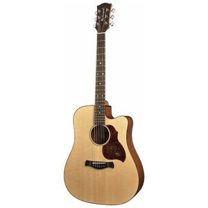 Richwood D-20CE Master Series Dreadnought